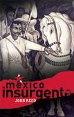 Tapa del libro Mexico Insurgente