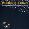 Tapa del libro Inodoro Pereyra 29