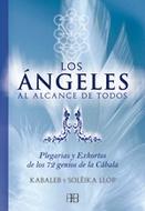 ANGELES AL ALCANCE DE TODOS, LOS (NUEVA EDICION)