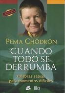 ** CUANDO TODO SE DERRUMBA (COEDICION)