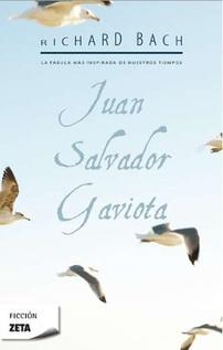 JUAN SALVADOR GAVIOTA - CHICO