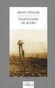 Tapa del libro TEMPESTADES DE ACERO