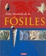 Atlas Ilustrado De Los Fosiles/
