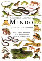 The amphibians and reptiles of Mindo (PD)