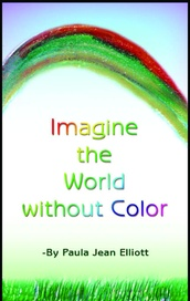 Tapa del libro Imagine The World Without Color